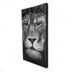 Framed 24 x 48 - 3D - Lion portrait