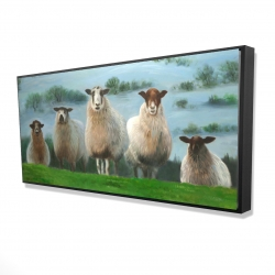 Framed 24 x 48 - 3D - Flock of sheep