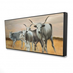 Framed 24 x 48 - 3D - Nguni breeding