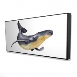Framed 24 x 48 - 3D - Watercolor blue whale