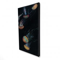 Framed 24 x 48 - 3D - Colorful jellyfishes swimming in the dark