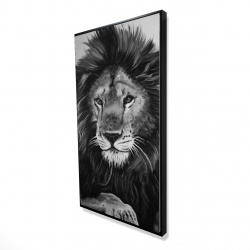 Framed 24 x 48 - 3D - The lion king