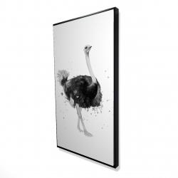 Framed 24 x 48 - 3D - Proud ostrich