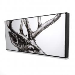 Framed 24 x 48 - 3D - Roe deer plume