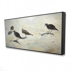 Framed 24 x 48 - 3D - Sandpiper birds