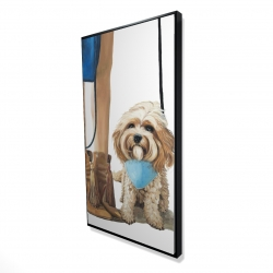 Framed 24 x 48 - 3D - Fashionable cavoodle dog
