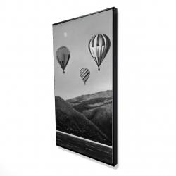 Framed 24 x 48 - 3D - Air balloon landscape