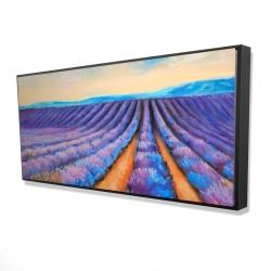 Framed 24 x 48 - 3D - Lavender fields