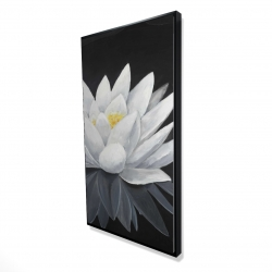 Framed 24 x 48 - 3D - Lotus flower with reflection