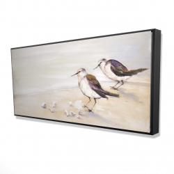Framed 24 x 48 - 3D - Two sandpipers on the beach