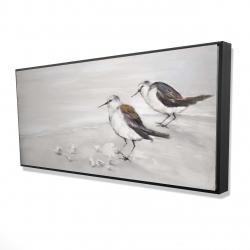 Framed 24 x 48 - 3D - Two sandpipiers birds