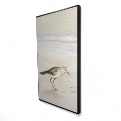 Framed 24 x 48 - 3D - Semipalmated sandpiper on the beach