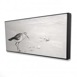Framed 24 x 48 - 3D - Semipalmated sandpiper