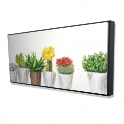 Framed 24 x 48 - 3D - Small cactus and succulents