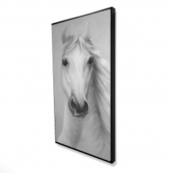 Framed 24 x 48 - 3D - Monochrome mighty white horse