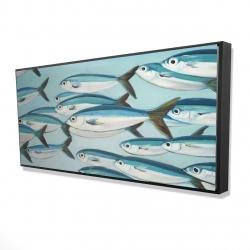 Framed 24 x 48 - 3D - Small fish of caesio caerulaurea