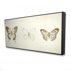Framed 24 x 48 - 3D - Butterflies sketch