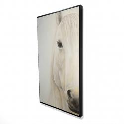 Framed 24 x 48 - 3D - Half portrait of a smiling horse