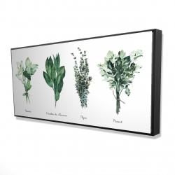 Framed 24 x 48 - 3D - Fines herbes