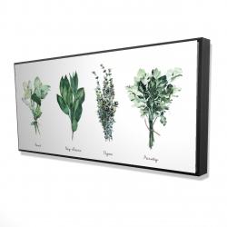 Framed 24 x 48 - 3D - Fine herbs