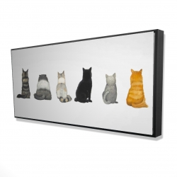 Framed 24 x 48 - 3D - Six cats lined up back view