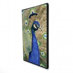Framed 24 x 48 - 3D - Peacock