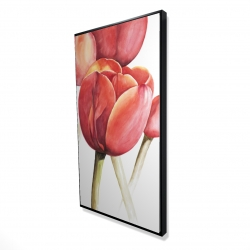 Framed 24 x 48 - 3D - Blossoming tulips closeup