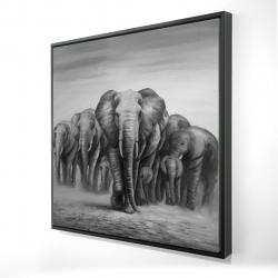 Encadré 24 x 24 - 3D - Troupeau d'éléphants