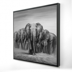 Framed 24 x 24 - 3D - Herd of elephants