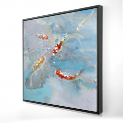 Framed 24 x 24 - 3D - Koi fish swimming in blue water
