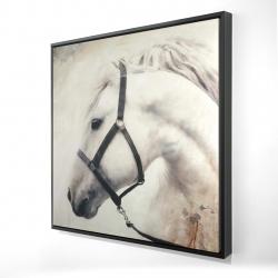 Framed 24 x 24 - 3D - Darius the white horse