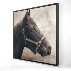 Encadré 24 x 24 - 3D - Gallopin le cheval brun