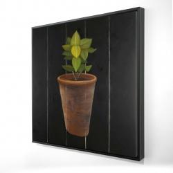 Framed 24 x 24 - 3D - Plant of bay leaves