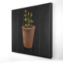 Framed 24 x 24 - 3D - Plant of marjolaine