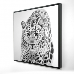 Framed 24 x 24 - 3D - Leopard ready to attack