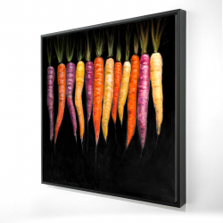 Framed 24 x 24 - 3D - Carrots varieties