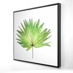 Framed 24 x 24 - 3D - Petticoat palm