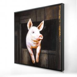 Framed 24 x 24 - 3D - Smiling pig