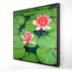 Framed 24 x 24 - 3D - Lotus flowers in a swamp