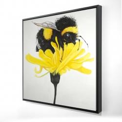 Framed 24 x 24 - 3D - Bumblebee on a dandelion