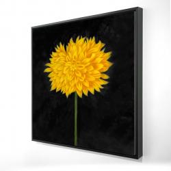 Framed 24 x 24 - 3D - Yellow chrysanthemum