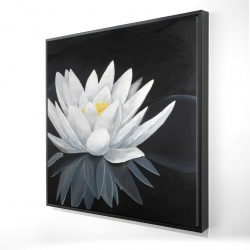 Framed 24 x 24 - 3D - Lotus flower with reflection