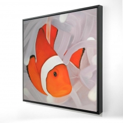 Framed 24 x 24 - 3D - Clownfish under the sea