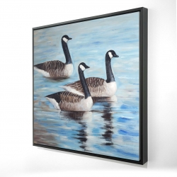 Framed 24 x 24 - 3D - Canada geese in water