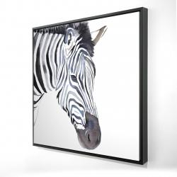 Framed 24 x 24 - 3D - Zebra
