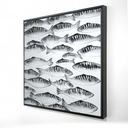 Framed 36 x 36 - 3D - Gray shoal of fish