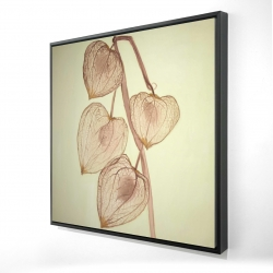 Framed 24 x 24 - 3D - Growing ground cherries