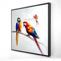 Framed 36 x 36 - 3D - Parrots on a branch