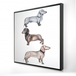 Framed 24 x 24 - 3D - Dachshund dogs