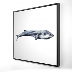 Framed 24 x 24 - 3D - Watercolor whale
